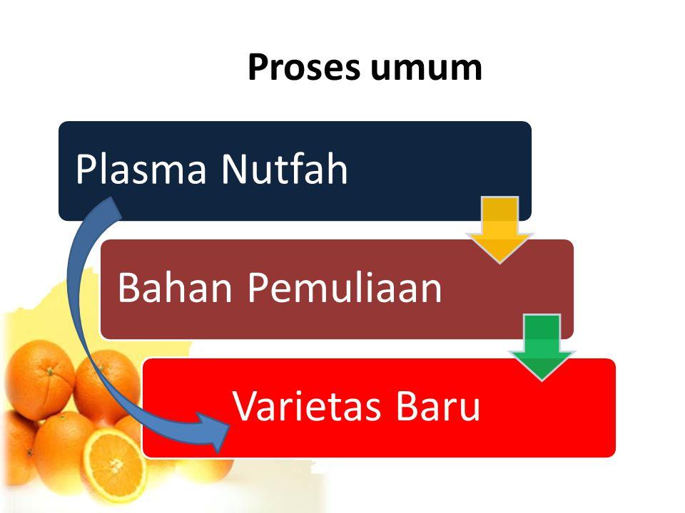 Proses umum Plasma Nutfah Bahan Pemuliaan Varietas Baru