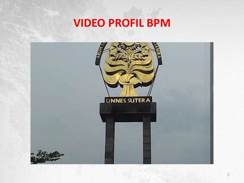 VIDEO PROFIL BPM