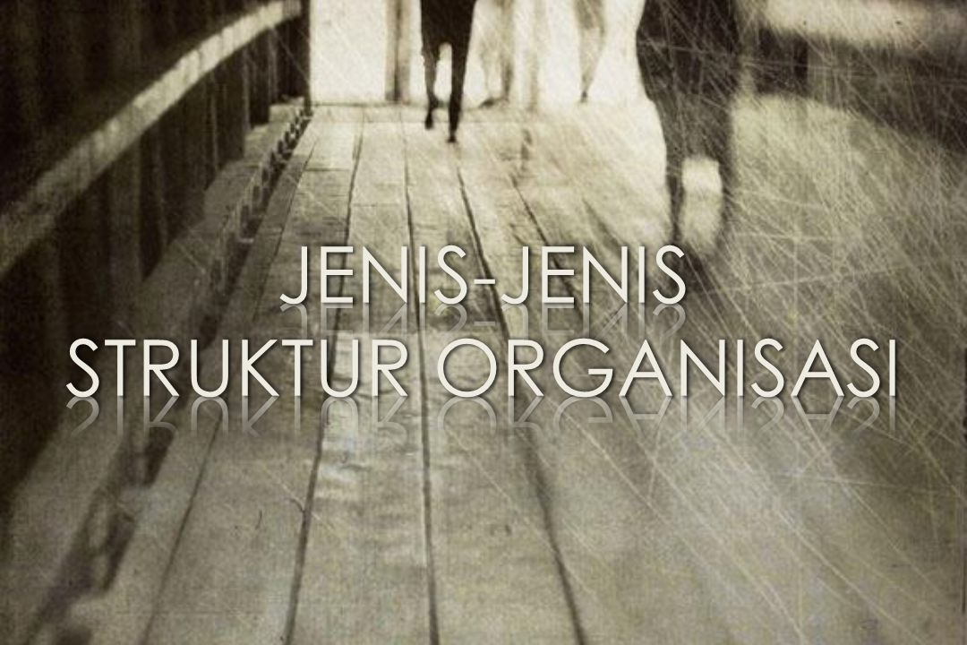 JENIS-JENIS STRUKTUR ORGANISASI