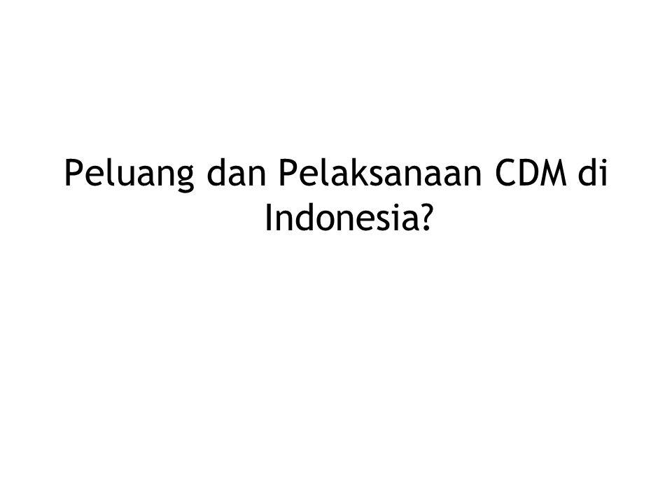 Peluang dan Pelaksanaan CDM di Indonesia