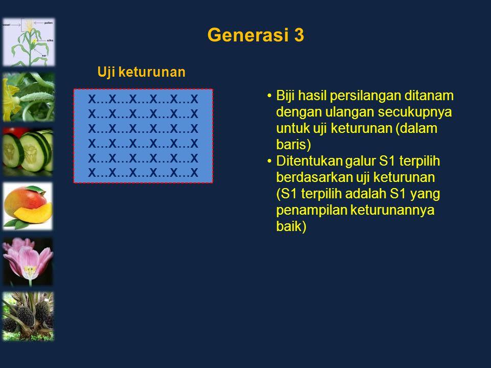 Generasi 3 Uji keturunan