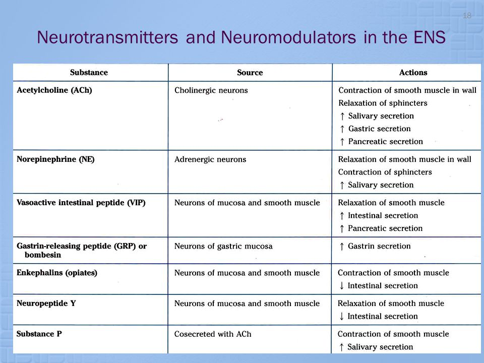 Neurotransmitters and Neuromodulators in the ENS