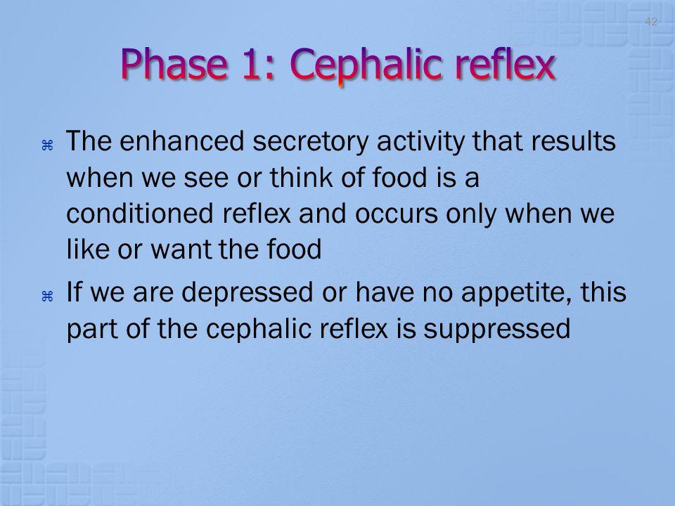 Phase 1: Cephalic reflex