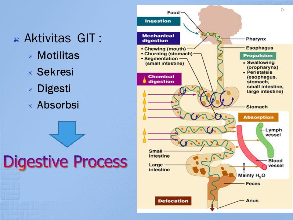 Aktivitas GIT : Motilitas Sekresi Digesti Absorbsi Digestive Process