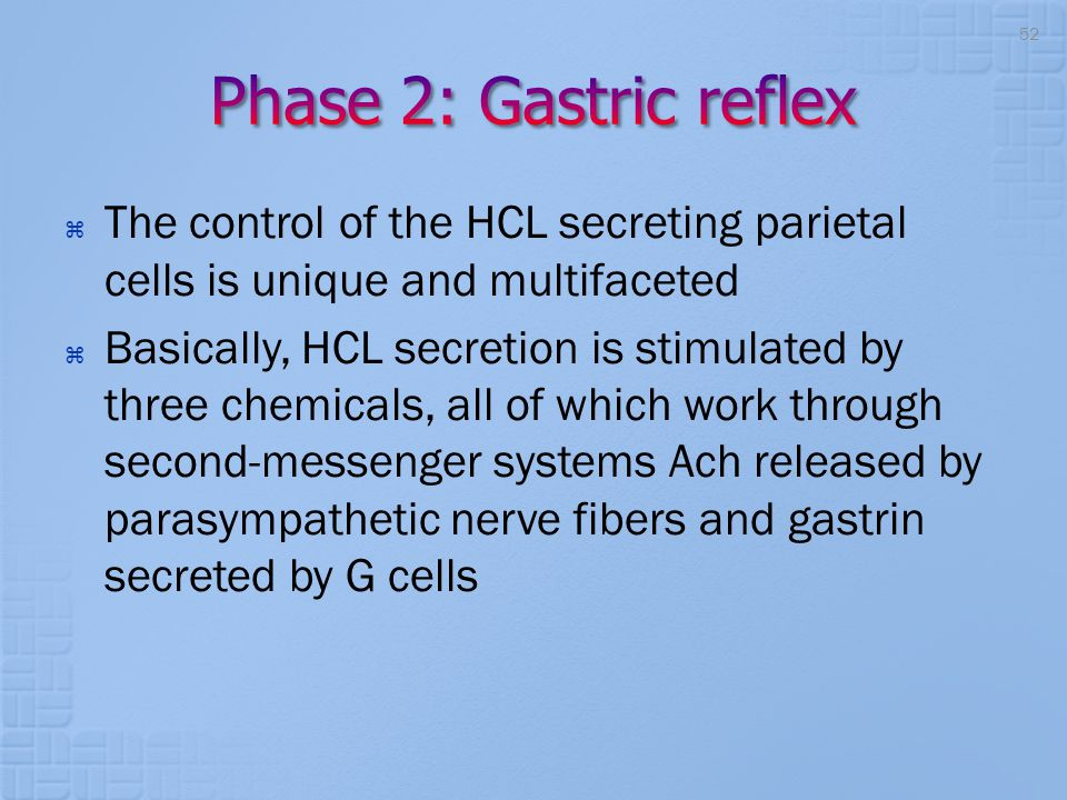 Phase 2: Gastric reflex The control of the HCL secreting parietal cells is unique and multifaceted.