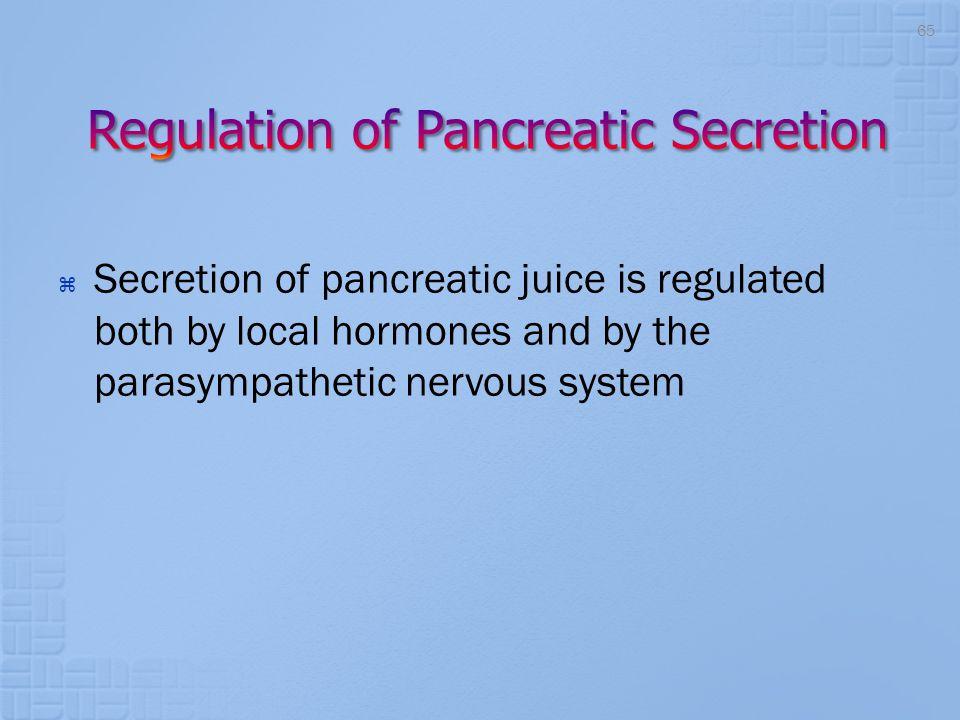 Regulation of Pancreatic Secretion