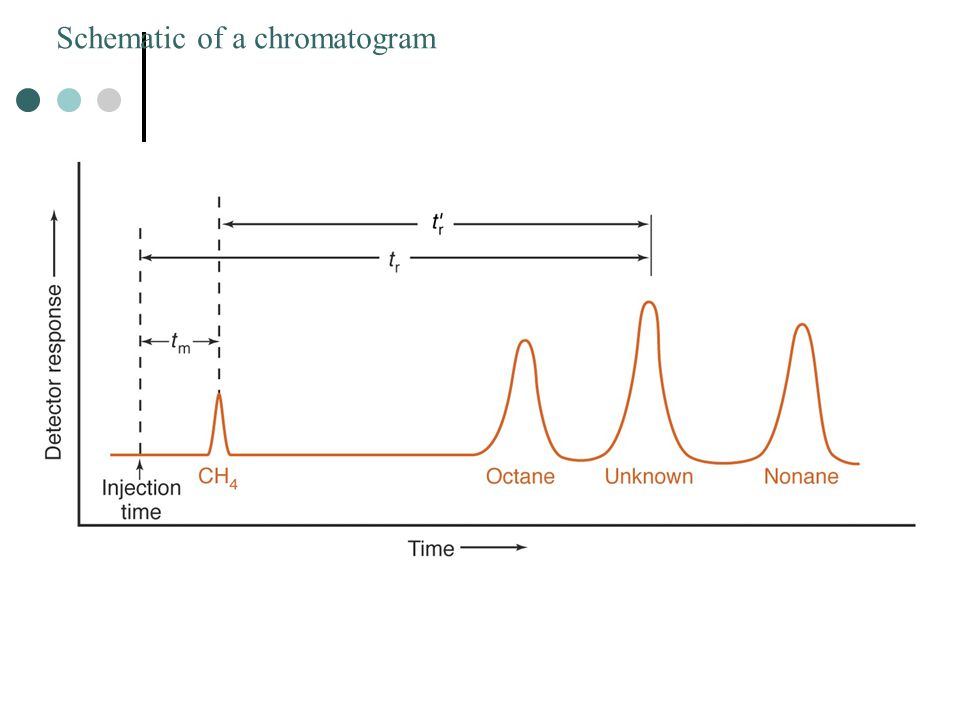 Schematic of a chromatogram