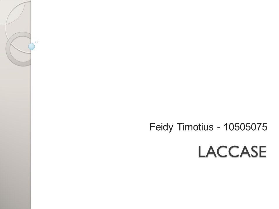Feidy Timotius - 10505075 LACCASE
