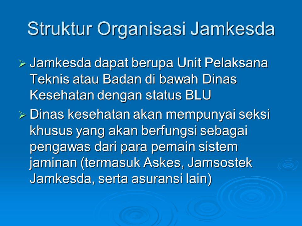 Struktur Organisasi Jamkesda