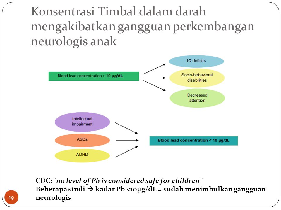Konsentrasi Timbal dalam darah mengakibatkan gangguan perkembangan neurologis anak