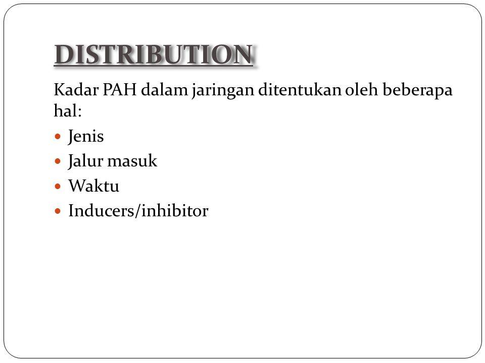 DISTRIBUTION Kadar PAH dalam jaringan ditentukan oleh beberapa hal: