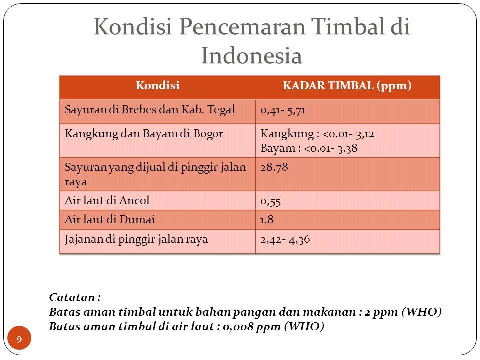 Kondisi Pencemaran Timbal di Indonesia