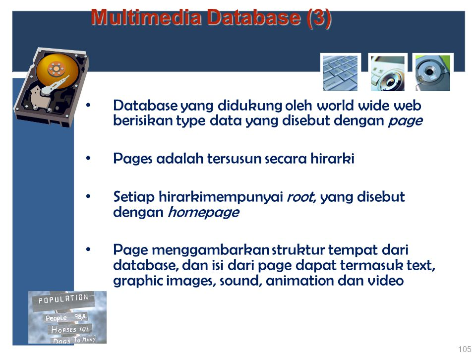Multimedia Database (3)