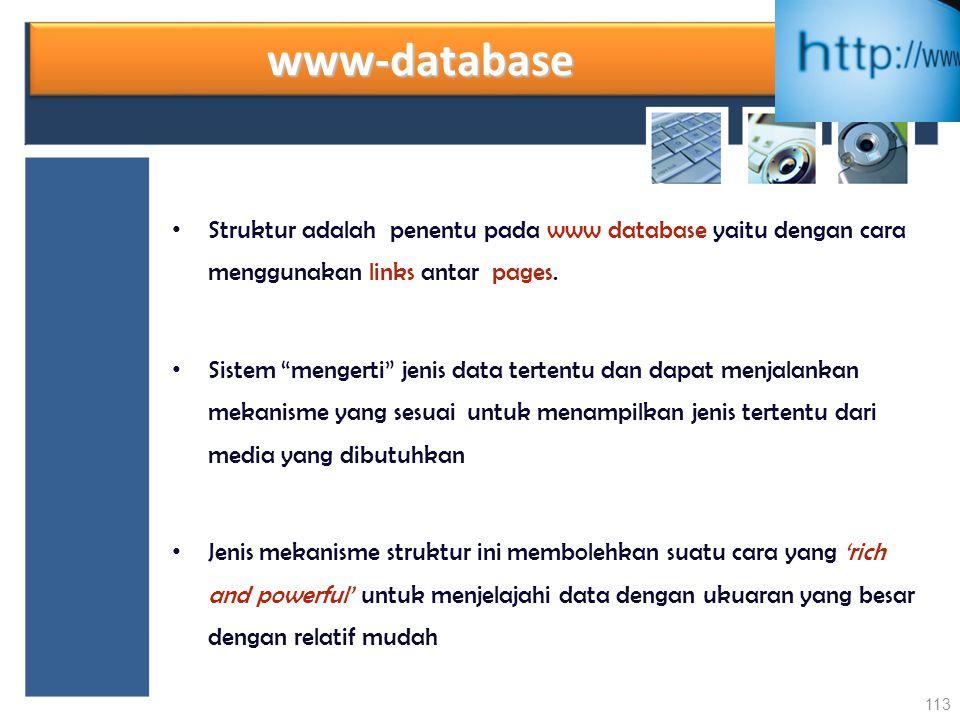 www-database Struktur adalah penentu pada www database yaitu dengan cara menggunakan links antar pages.