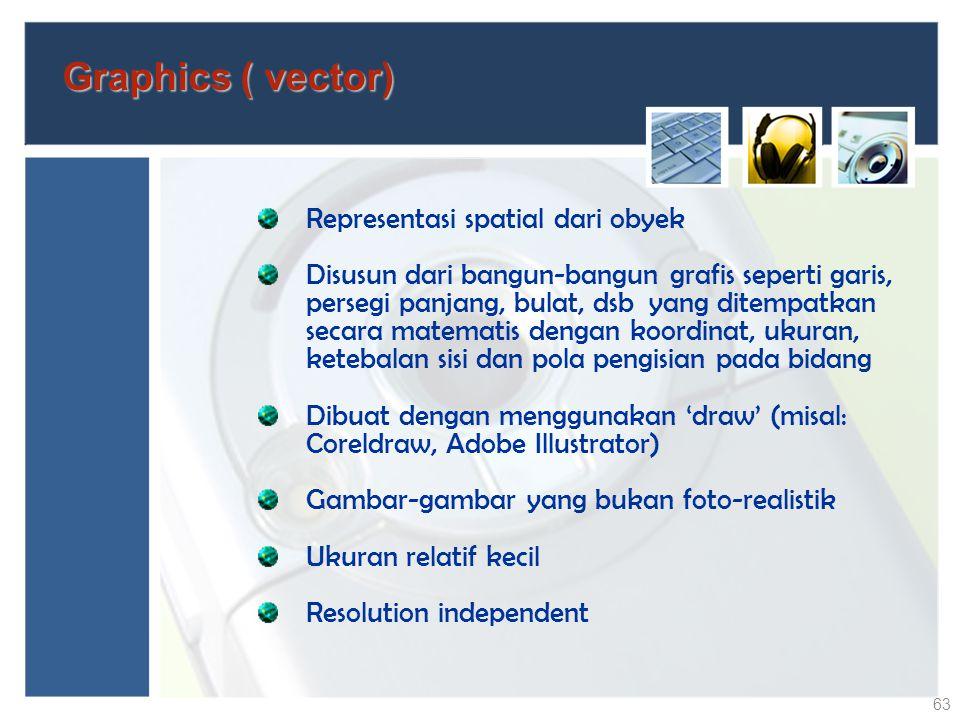 Graphics ( vector) Representasi spatial dari obyek