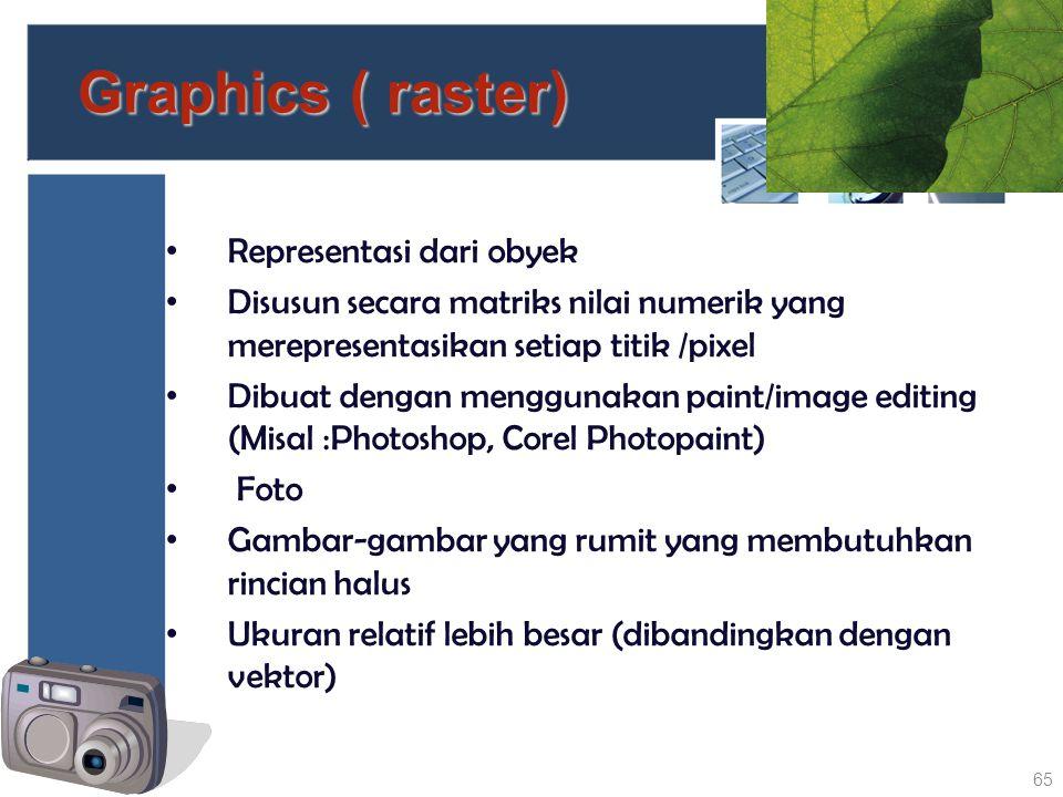 Graphics ( raster) Representasi dari obyek