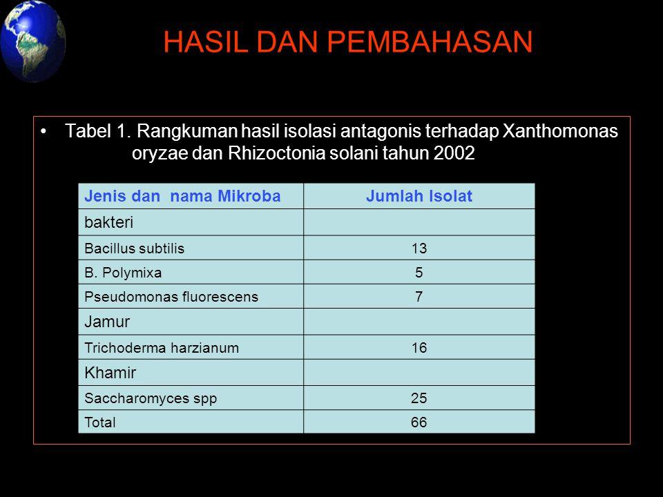 HASIL DAN PEMBAHASAN Tabel 1. Rangkuman hasil isolasi antagonis terhadap Xanthomonas oryzae dan Rhizoctonia solani tahun 2002.
