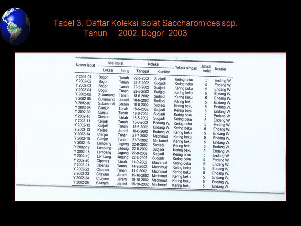 Tabel 3. Daftar Koleksi isolat Saccharomices spp. Tahun. 2002