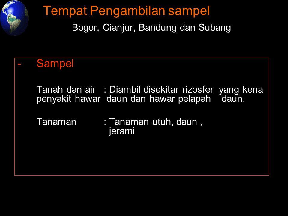-Tempat Pengambilan sampel : -Bogor, Cianjur, Bandung dan Subang