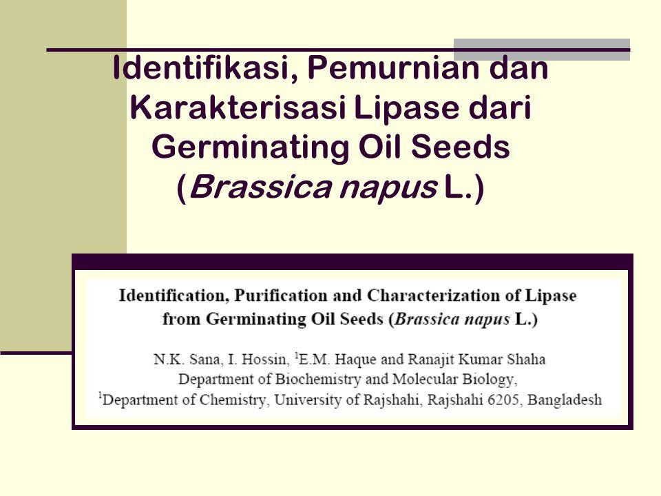 Identifikasi, Pemurnian dan Karakterisasi Lipase dari Germinating Oil Seeds (Brassica napus L.)