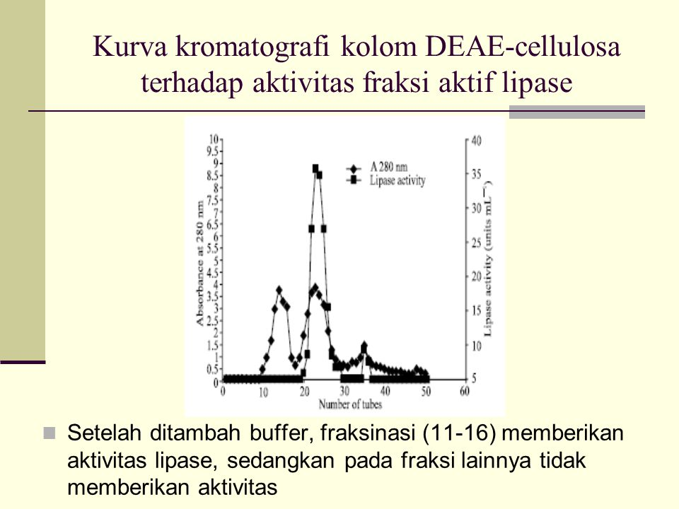 Kurva kromatografi kolom DEAE-cellulosa terhadap aktivitas fraksi aktif lipase