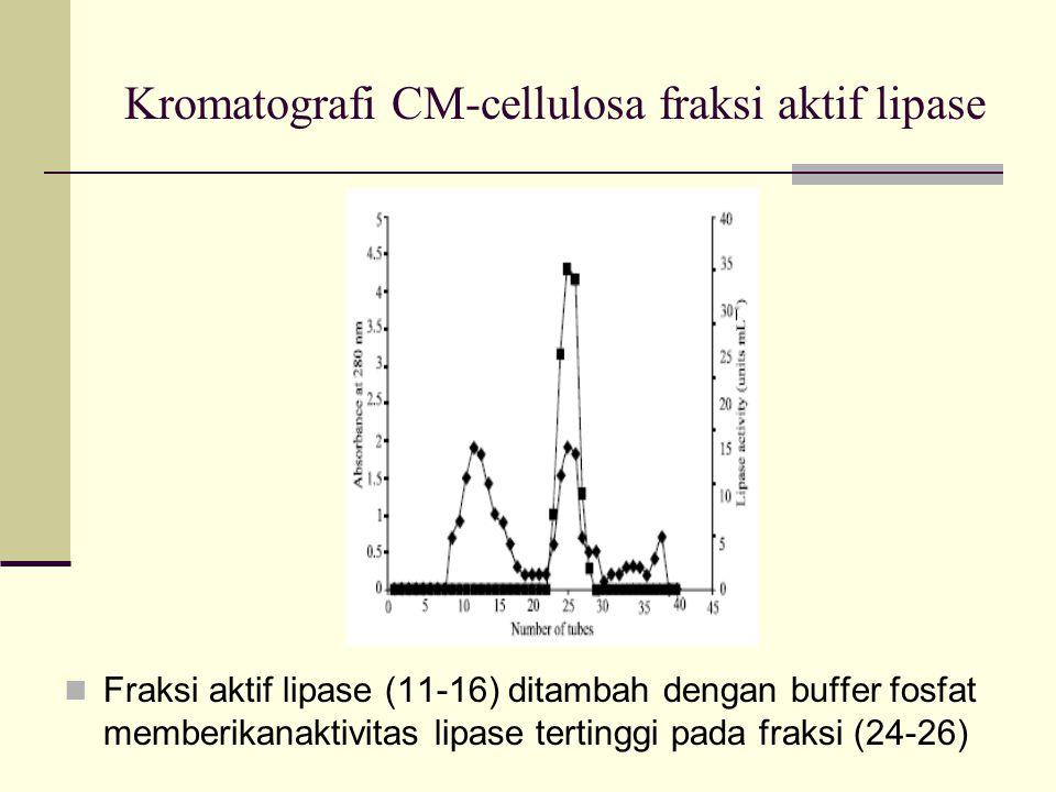 Kromatografi CM-cellulosa fraksi aktif lipase