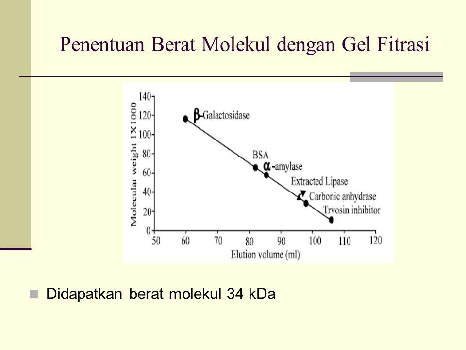 Penentuan Berat Molekul dengan Gel Fitrasi
