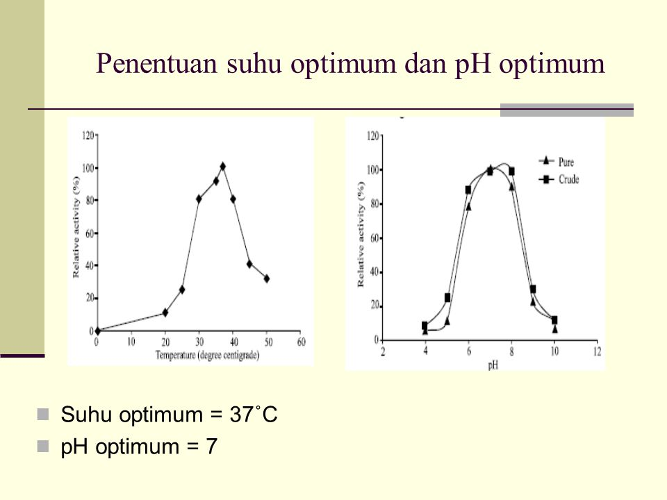 Penentuan suhu optimum dan pH optimum