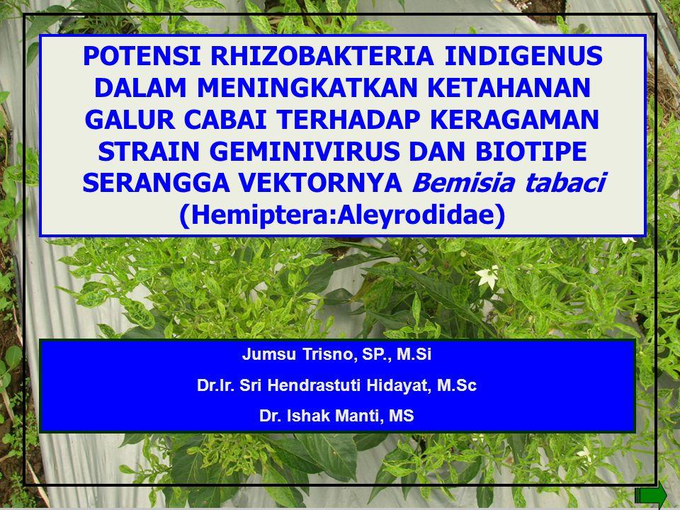 Dr.Ir. Sri Hendrastuti Hidayat, M.Sc