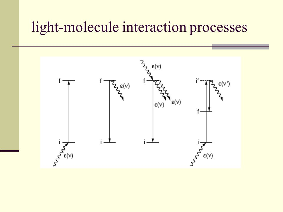 light-molecule interaction processes