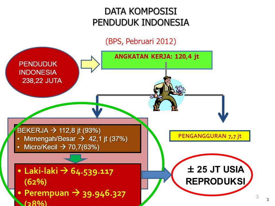 DATA KOMPOSISI PENDUDUK INDONESIA Laki-laki  64.539.117 (62%)