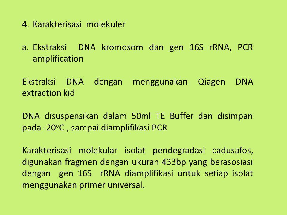 Karakterisasi molekuler