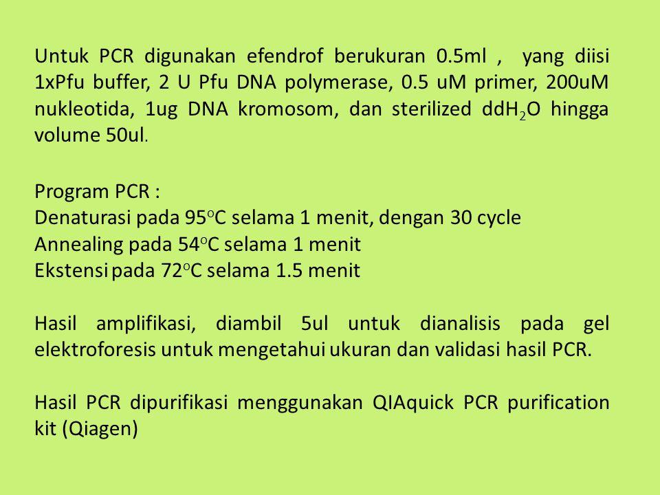 Untuk PCR digunakan efendrof berukuran 0