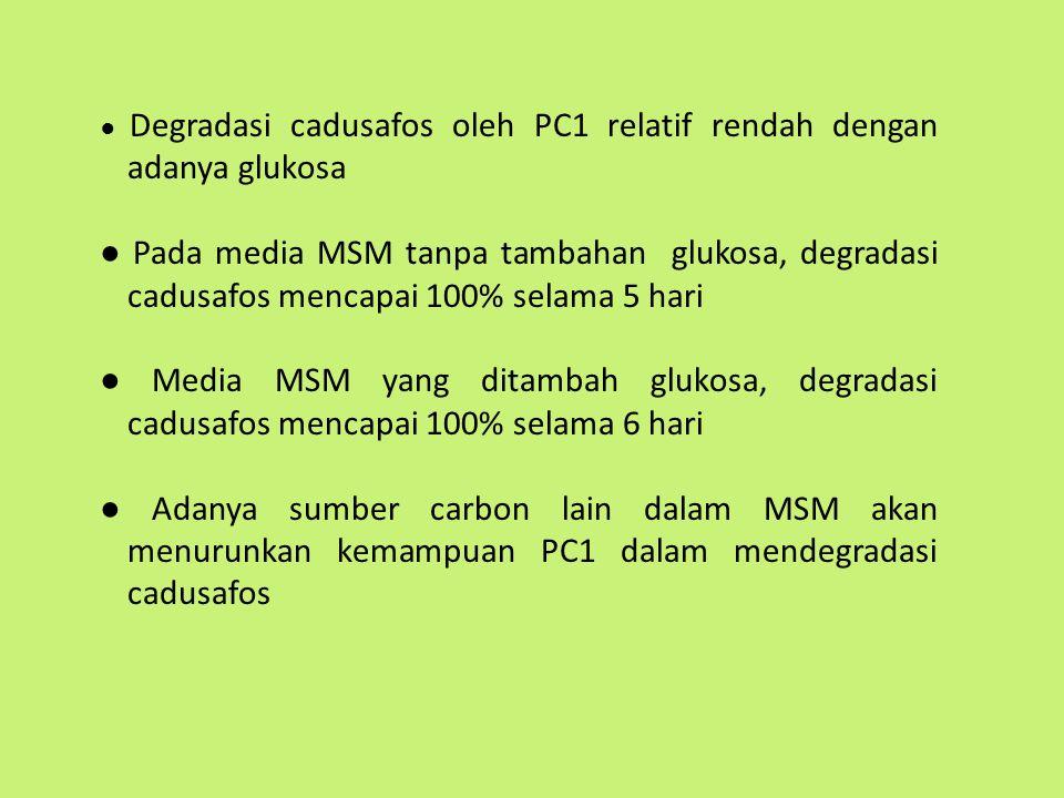● Degradasi cadusafos oleh PC1 relatif rendah dengan adanya glukosa
