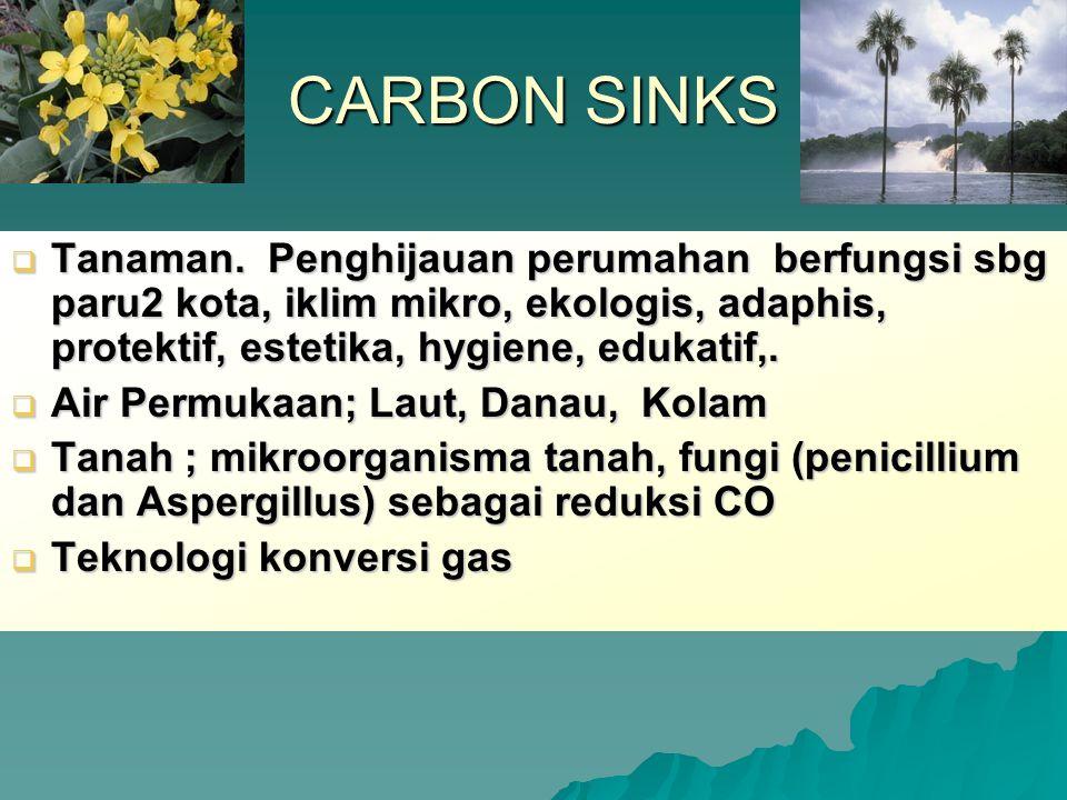CARBON SINKS Tanaman. Penghijauan perumahan berfungsi sbg paru2 kota, iklim mikro, ekologis, adaphis, protektif, estetika, hygiene, edukatif,.