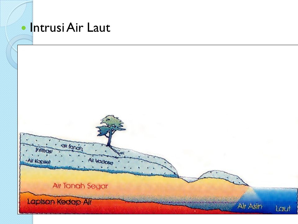 Intrusi Air Laut