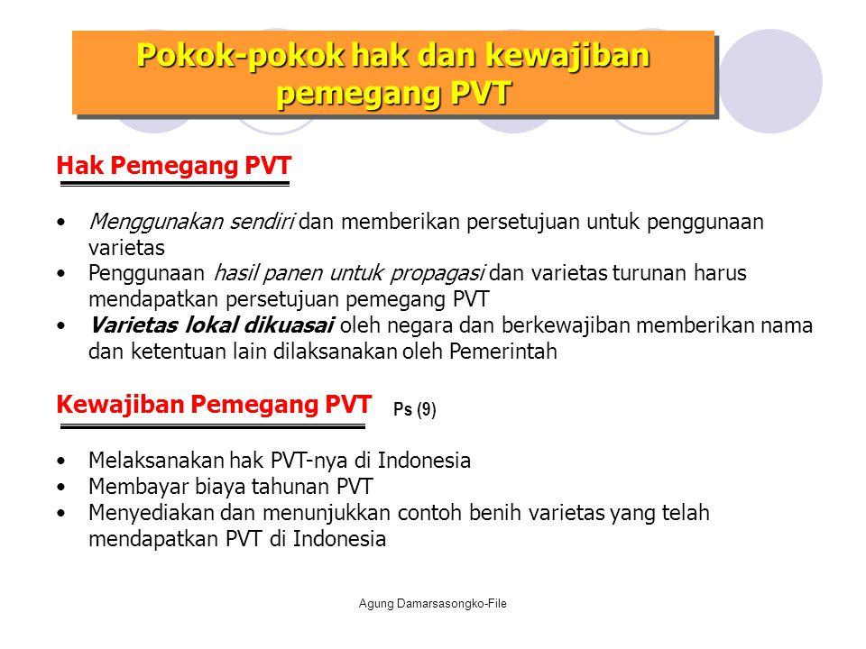 Pokok-pokok hak dan kewajiban pemegang PVT