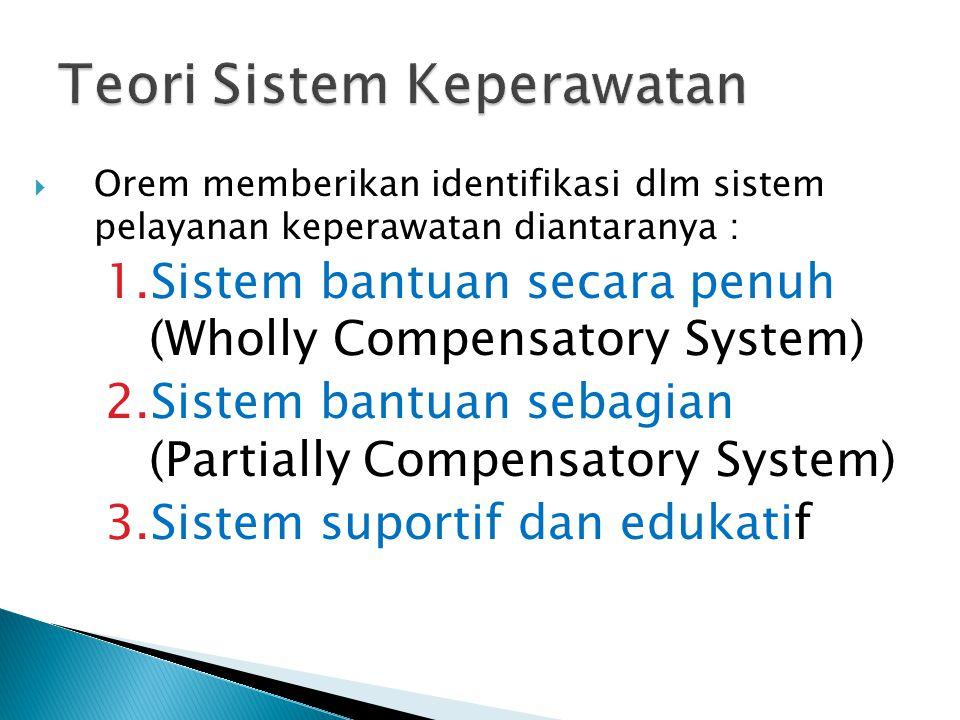 Teori Sistem Keperawatan