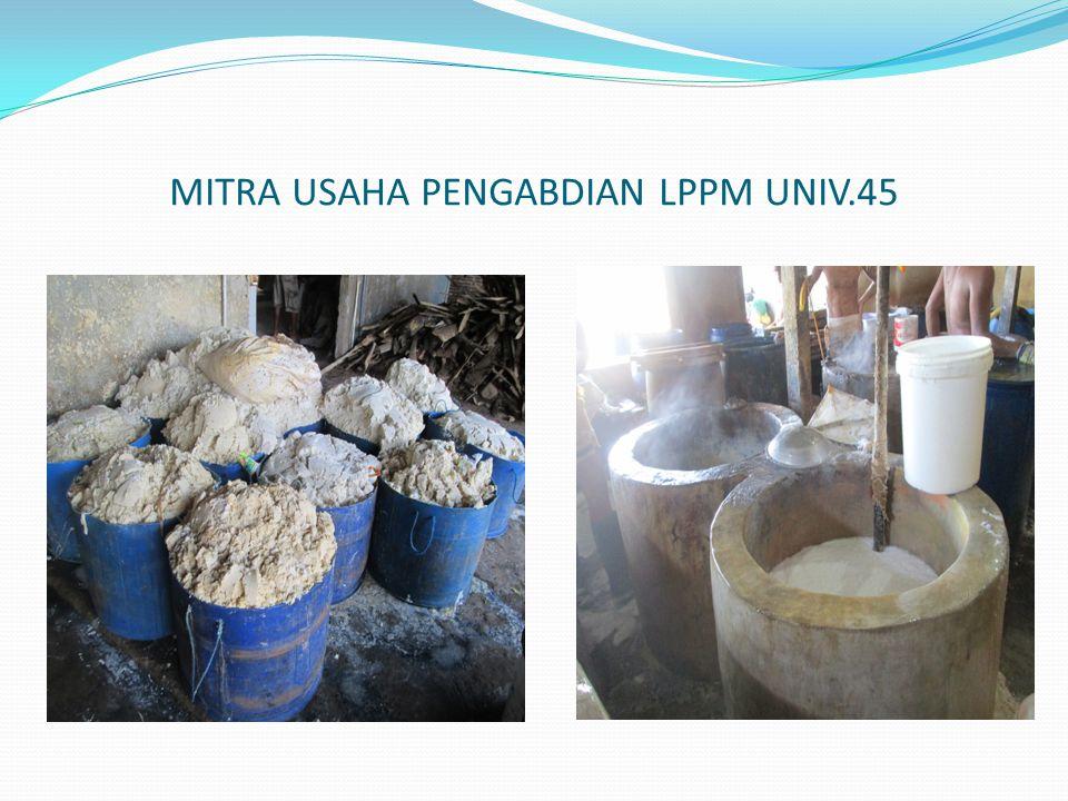 MITRA USAHA PENGABDIAN LPPM UNIV.45