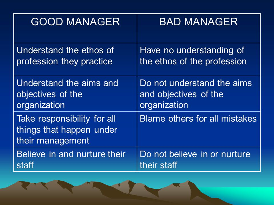 GOOD MANAGER BAD MANAGER
