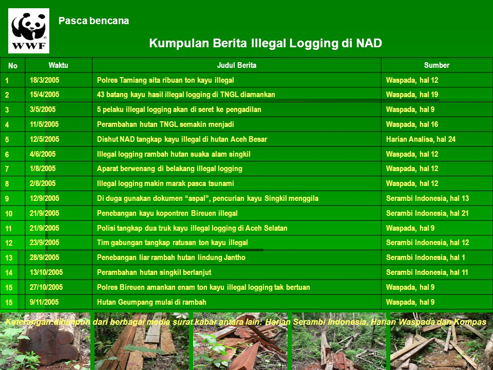 Kumpulan Berita Illegal Logging di NAD