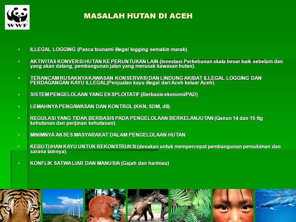 MASALAH HUTAN DI ACEH ILLEGAL LOGGING (Pasca tsunami illegal logging semakin marak).