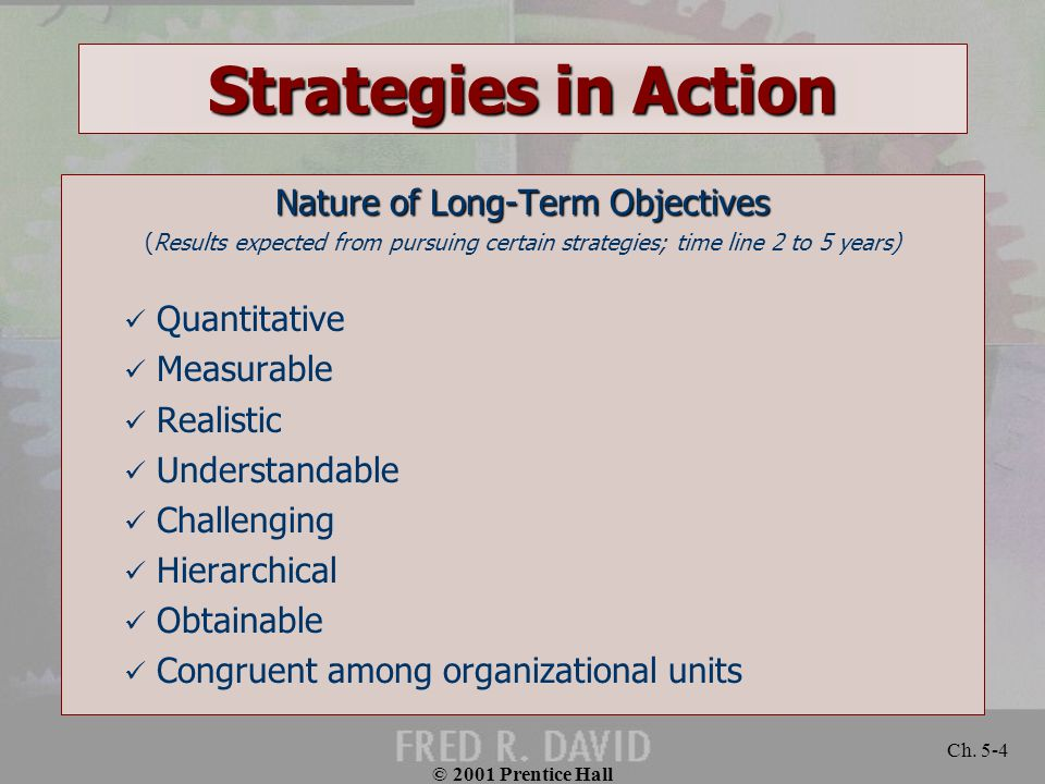 Nature of Long-Term Objectives