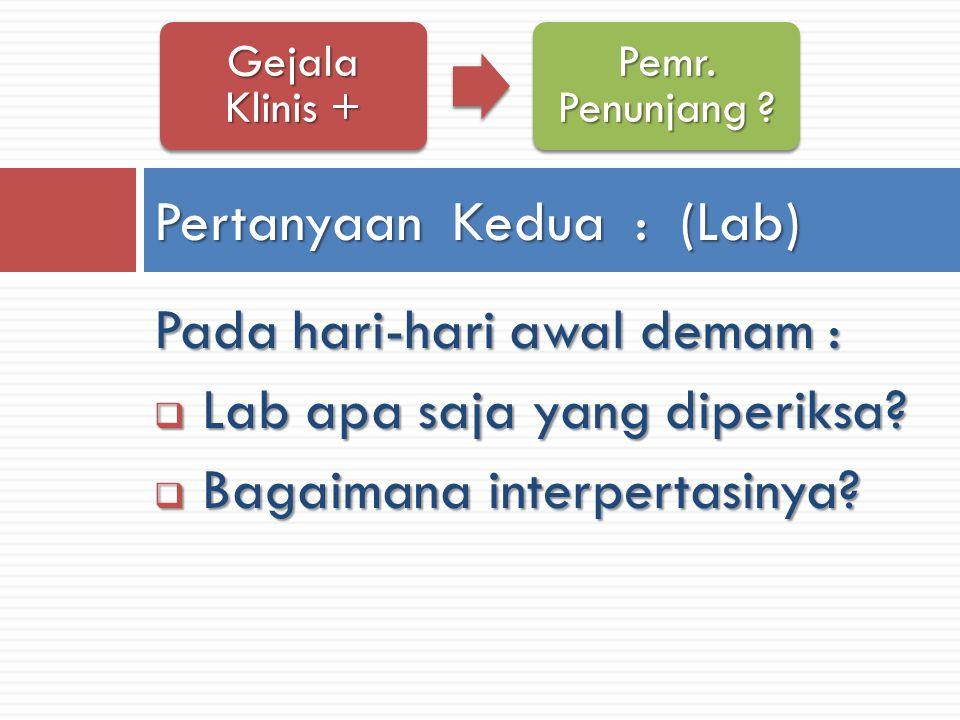 Pertanyaan Kedua : (Lab)