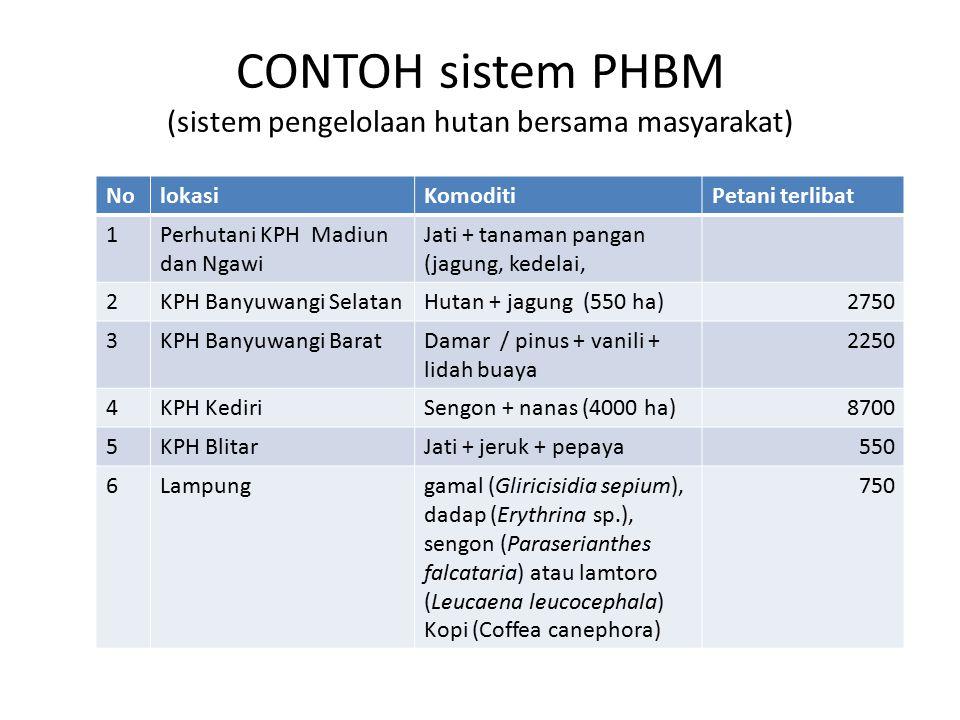 CONTOH sistem PHBM (sistem pengelolaan hutan bersama masyarakat)