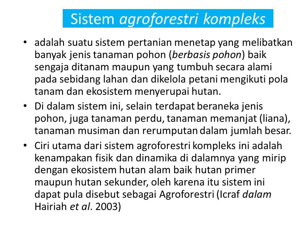 Sistem agroforestri kompleks