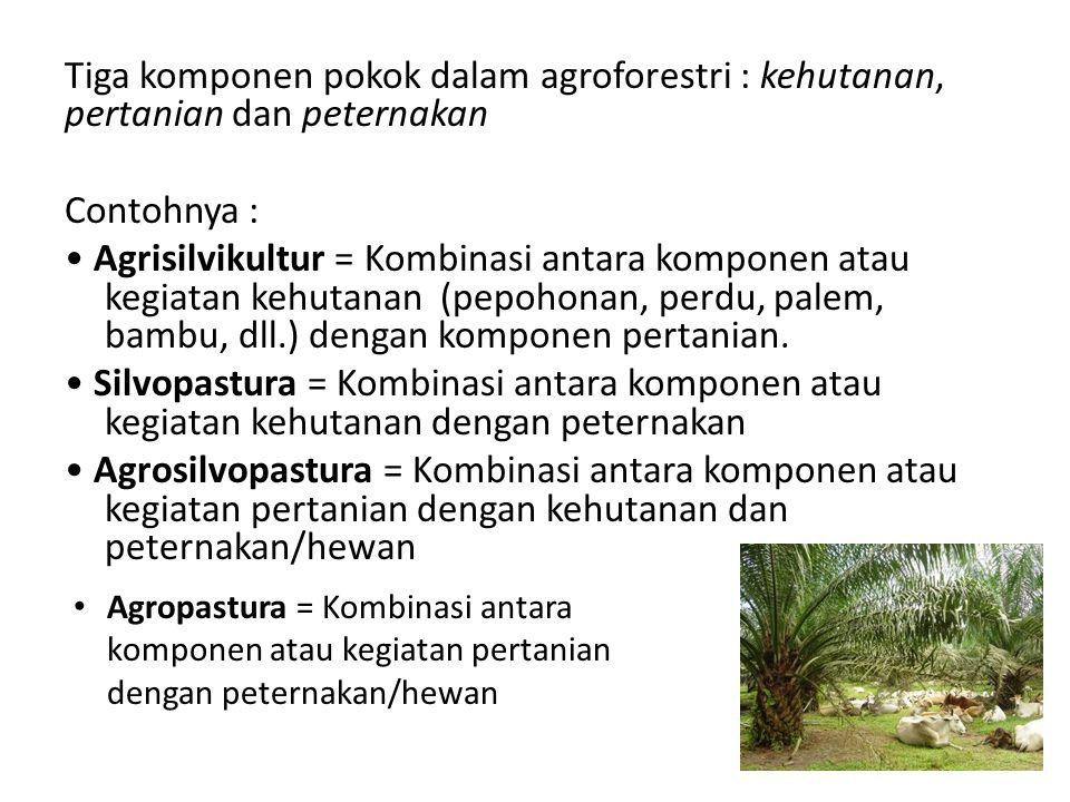 Tiga komponen pokok dalam agroforestri : kehutanan, pertanian dan peternakan Contohnya : • Agrisilvikultur = Kombinasi antara komponen atau kegiatan kehutanan (pepohonan, perdu, palem, bambu, dll.) dengan komponen pertanian. • Silvopastura = Kombinasi antara komponen atau kegiatan kehutanan dengan peternakan • Agrosilvopastura = Kombinasi antara komponen atau kegiatan pertanian dengan kehutanan dan peternakan/hewan