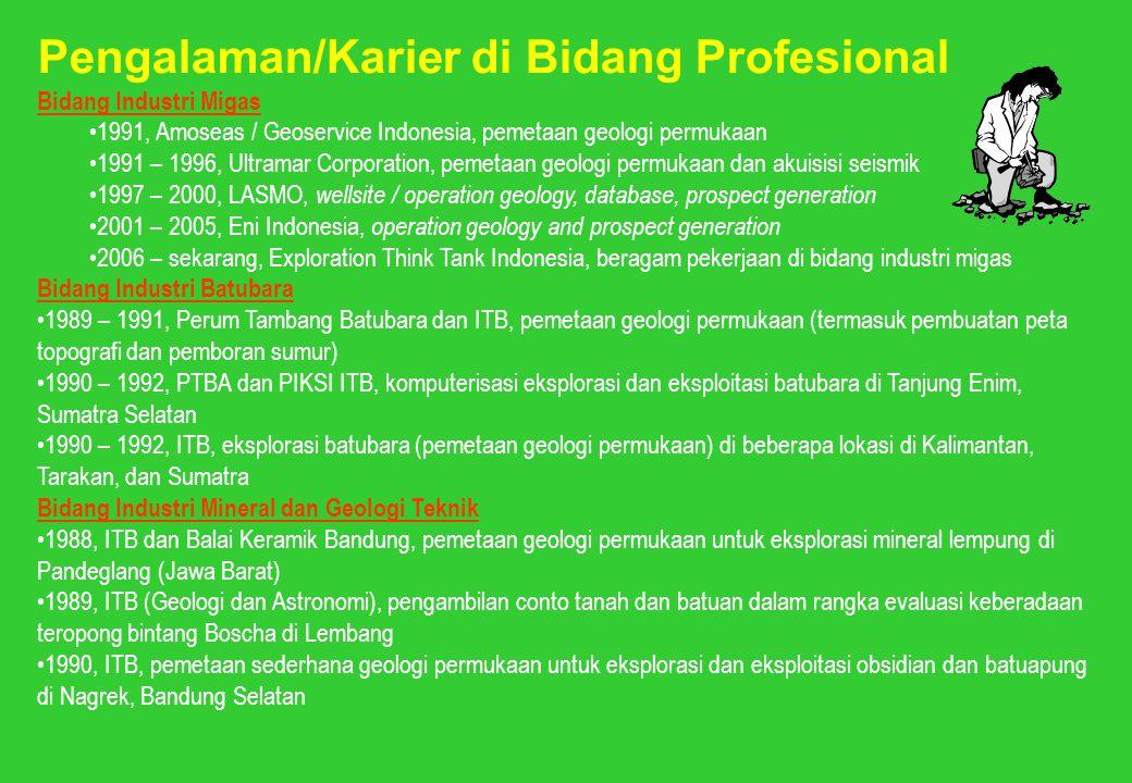 Pengalaman/Karier di Bidang Profesional
