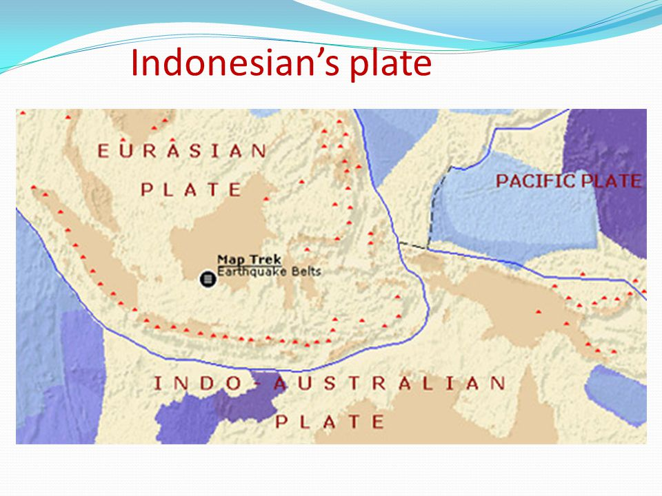 Indonesian's plate