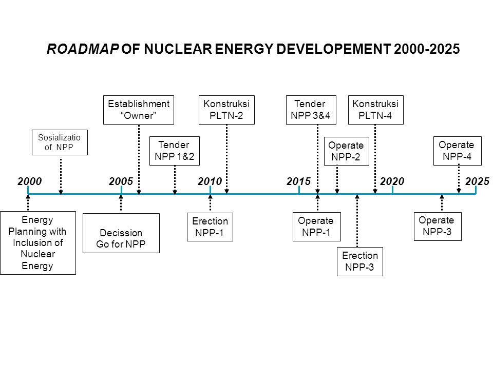 ROADMAP OF NUCLEAR ENERGY DEVELOPEMENT 2000-2025